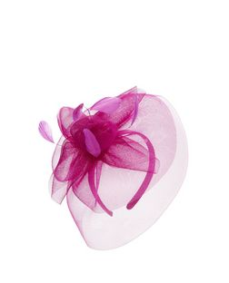 Pink Feather Net Fascinator | New Look