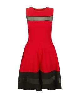 Cameo Rose Red Mesh Panel Skater Dress  | New Look