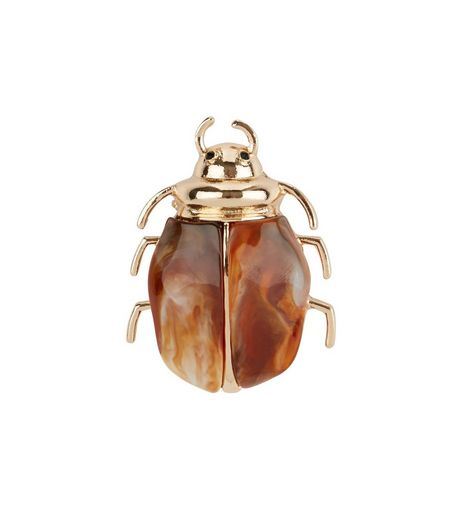 Brown Bug Brooch  | New Look