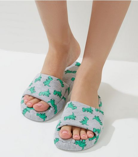 Grey Dinosaur Print Slippers | New Look